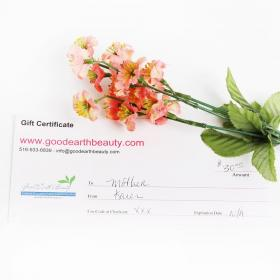 Good Earth Beauty Gift Certificate